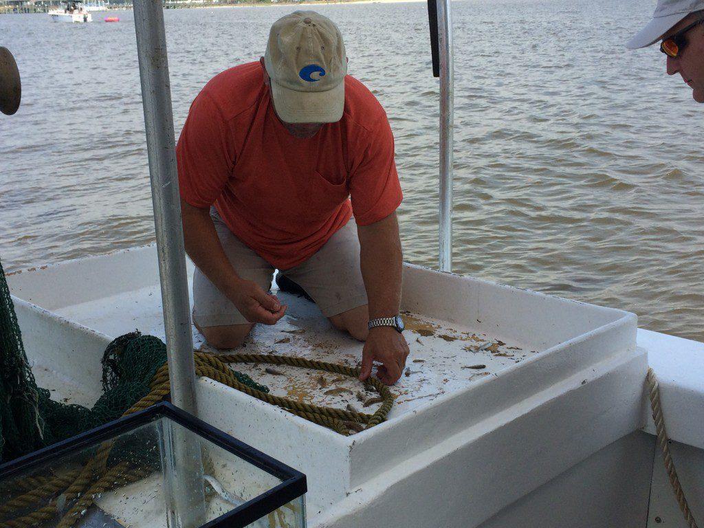 Biloxi Shrimp Tour