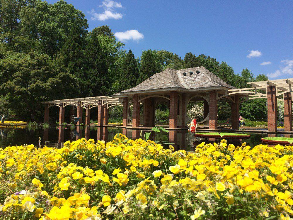The Key To Huntsville Botanical Garden Bill On The Road