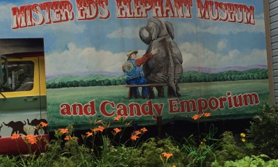 Elephant Museum
