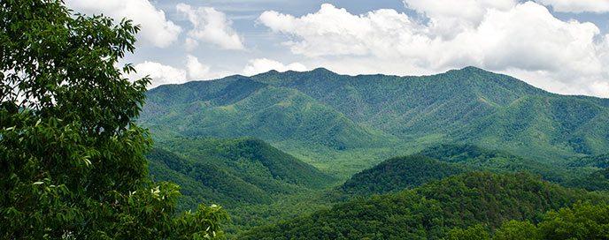 mountainview