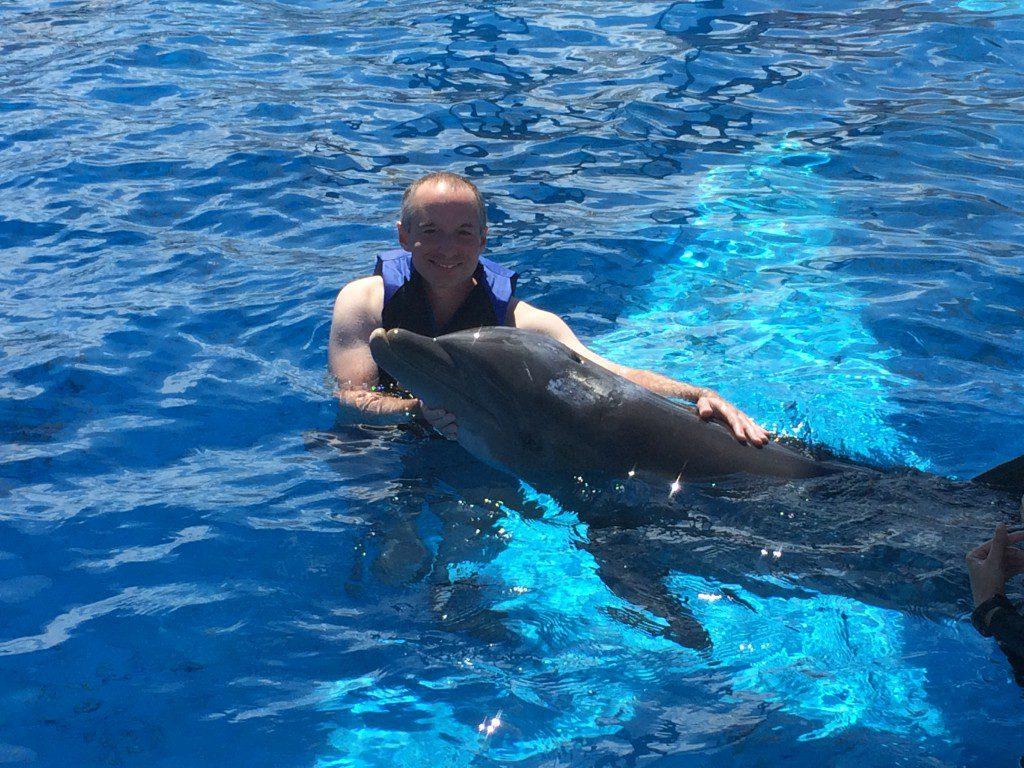 Dolphin Destin